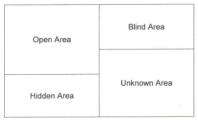 johari window with examples